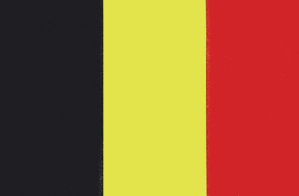 allpa Belgische vlag 20x30cm