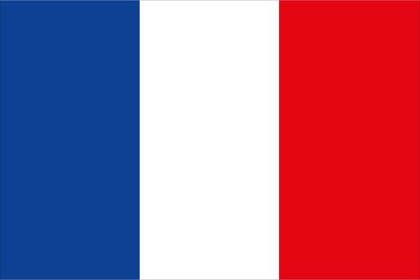 allpa Franse vlag 20x30cm
