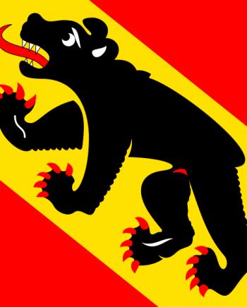 allpa Bern vlag 20x30cm