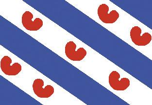 allpa Friese vlag 40x60cm