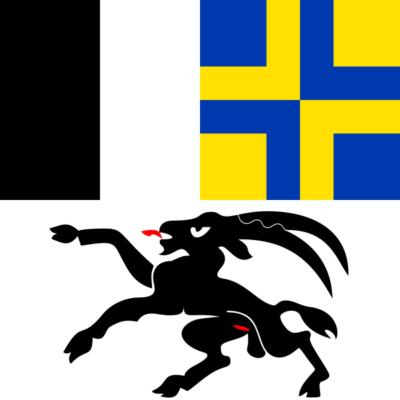 allpa Graubünden vlag 20x30cm