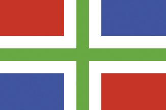 allpa Groningen vlag 20x30cm