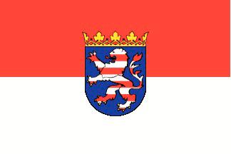 allpa Hessen vlag 20x30cm